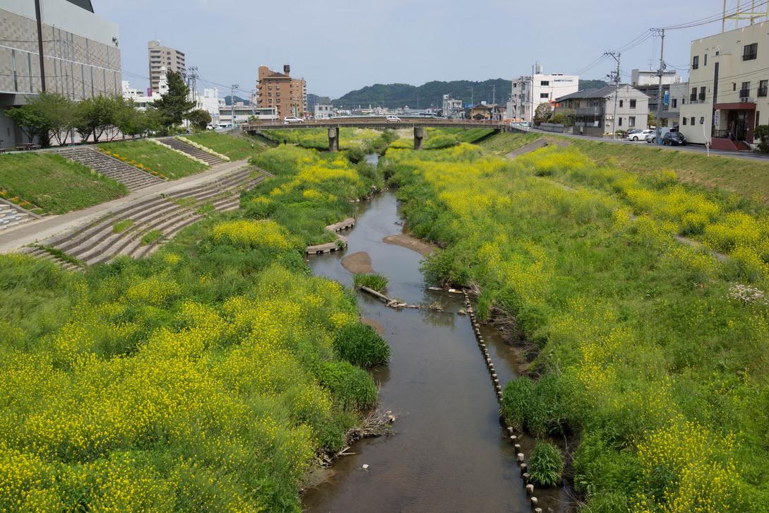 http://www.gobumori.com/picture/130516-newriver.jpg
