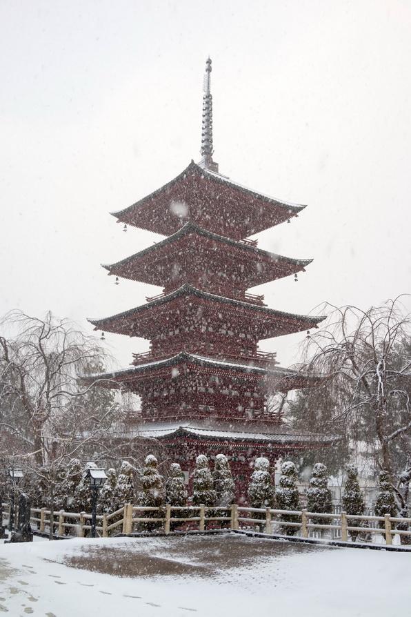 http://www.gobumori.com/picture/161210-DSC04095.jpg
