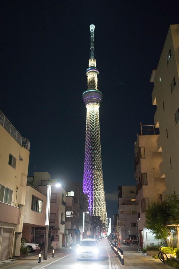 http://www.gobumori.com/picture/DSC05047.jpg